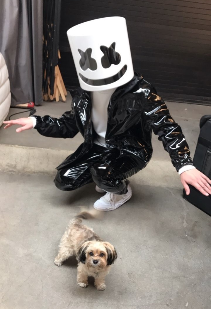worse-dresssed-DJ-2017_Marshmello-leather