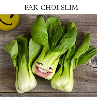 DJs-You-Can-Eat_Pak-Choi-Slim