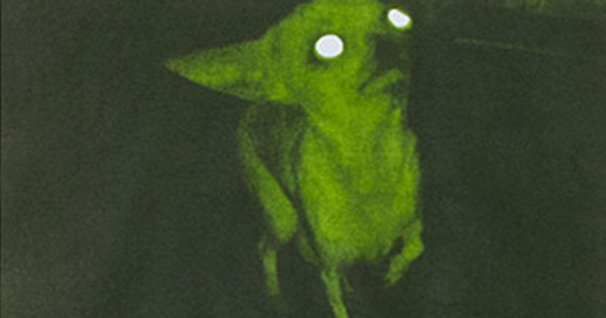 Aphex-Twin-Rubber-Johnny-Chihuahua_1200x630